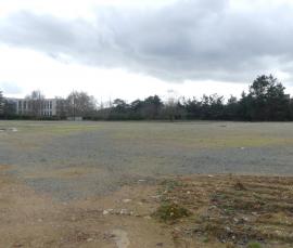 Terrain de 45.000 m2 à louer en bloc ou en partie